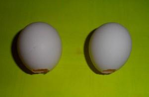 Колокольчик из яичной скорлупы.