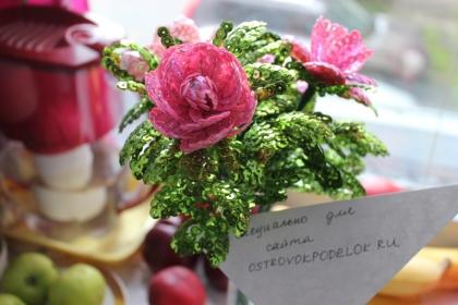 Конкурсная работа: миниатюрная роза «SweetFairy».